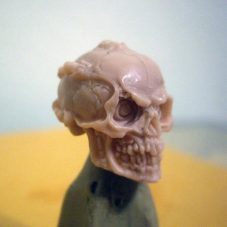Robotic Skull